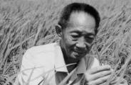 袁隆平院士丧事从简,殡仪馆不接待群众悼念